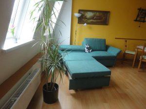 fewo-horst-wohnzimmer